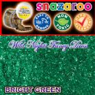 SNAZAROO FACE PAINT GLITTER GEL BRIGHT GREEN 12ML TUB